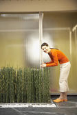 Asian woman pruning horsetail plants — Stock Photo