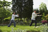 Senior Asian couple practicing tai chi — Stok fotoğraf