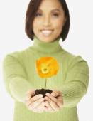 Asian woman holding flower in dirt — Stock Photo