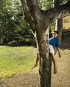 Asia muchacho durmiendo en el árbol — Foto de Stock