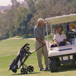 Multi-ethnic seniors on golf course — Stock Photo #52080183