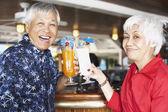 Senior Asian couple toasting — Stock Photo