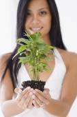 Pacific Islander woman holding plant — Stock Photo