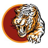 Roaring tiger logo design — Stock Vector