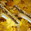 Two saxophones  laying on the yellow leaves in autumn park — Stock Photo #55945237