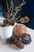 Floral composition with branches, pine — Foto de Stock