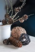 Floral composition with branches, pine — Stockfoto