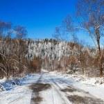 Winter landscape — Stock Photo #76926509