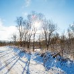 Winter landscape — Stock Photo #76926539