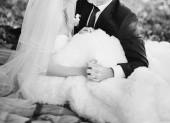 Newlywed couple holding hands. — Stock Photo