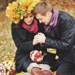 Great relationship. Young sweet couple having date in autumn park. — Stock Photo #54170491