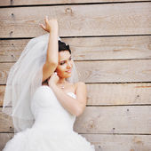 Young brunette bride. — Stock Photo