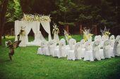 Beautiful wedding cerremony in forest. — Stock Photo
