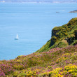 Beautiful view from Cap Frehel hills — Stock Photo #56067563