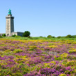 Lighthouse on Cap Frehel and the fields — Stock Photo #56068141
