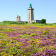Lighthouse on Cap Frehel and the fields — Stock Photo #56068257