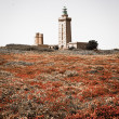 Lighthouse on Cap Frehel and the fields — Stock Photo #56068277