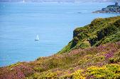 Beautiful view from Cap Frehel hills — Foto de Stock
