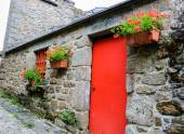 Old stone house with red door — Stock Photo