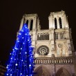 Christmas tree in front of the Notre Dame cathedral — Stock Photo #60986695