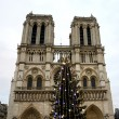 Christmas tree in front of the Notre Dame cathedral — Stock Photo #60986689