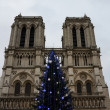 Christmas tree in front of the Notre Dame cathedral — Stock Photo #60986693