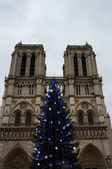 Christmas tree in front of the Notre Dame cathedral — Foto Stock