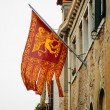 Flag of Venice with winged lion — Stock Photo #75885145