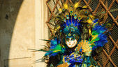 Peacock mask during traditional Carnival. — Stock Photo