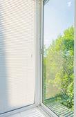 Window blinds — Stock Photo