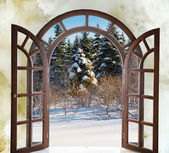 Open arched door with views of the natural landscape — 图库照片