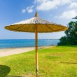Parasol of straw on the sea — Stock Photo #59467801