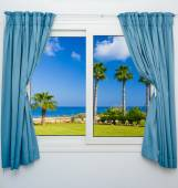 Window view of the sea palm — Stock Photo