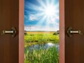 Open door with a view of green meadow illuminated by bright suns — Stockfoto