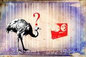 Barcode animal design art idea — Fotografia Stock