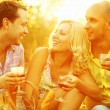 Summer weekend concept. Portrait of happy group of friends in park — Stock Photo #76588013