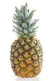 Pineapple Isolated — Stock Photo