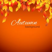 Autumnal background with leaf decoration — Stock Vector