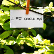 Life Goes On — Stock Photo #54244019