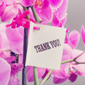 Bouquet of orchids with a Thank You note — ストック写真
