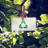 Recycle Sign on Small White Paper at Garden — Stock Photo