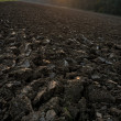 Ploughed field during sunset — Stock Photo #56277801