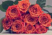 Bando de rosas laranja flor com folhas verdes — Fotografia Stock