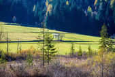 Rural landscape of green farmland and forests — Stock Photo
