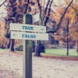Постер, плакат: Opposite directions towards True and False