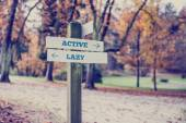 Rustic wooden sign with the words Active - Lazy — Stock Photo
