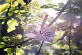 Message of Love in nature — Stock Photo
