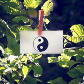 Yin and yang symbol on a white card hanging from a leafy green b — Stok fotoğraf