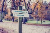 Rustic wooden sign in an autumn park with the words Professional — Stock Photo