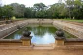 Twin Ponds, Ancient Monastery Bathing Pools, Sri Lanka — Stock Photo